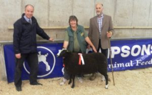 Raymond Bready from sponsors Thompsons Animal feeds, Roy Graham, judge and the winning ewe lamb