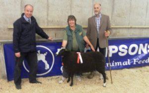 Raymond Bready from sponsors Thompsons Animal feeds, Roy Graham, judge and the winning ewe lamb