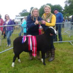 Virbac Cup for Zwartbles Sheep Champion