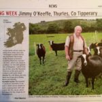 Jimmy O'Keeffee and his Zwartbles