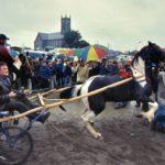 Ballinasloe Horse Fair 2003