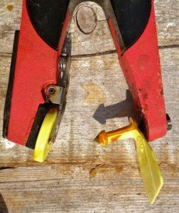 Ear Tagging Tool Loaded & Ready