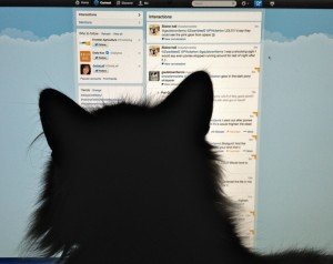 Bodacious Reading Tweeter