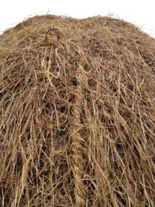 Hay Cord