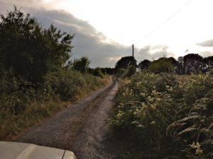 Narrow Lanes Also Known as Boreens