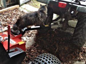 Checking Quad Tire Pressure