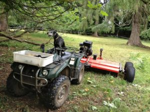 Mowing Under the Trees