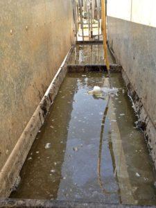 Water Dissolving Zinc Sulphate
