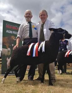 John Rowlands, Noel Lally & Reserved Champion Ewe