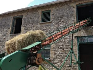 First Bail of Hay