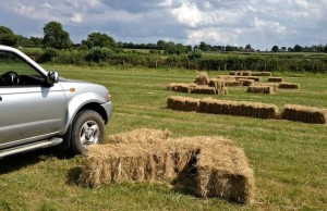 A Field of Hay Bails