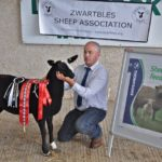 Overall Show & Sale Champion Ewe Lamb Glencoy 00280-0016A Held by Her Owner Liam Campbell