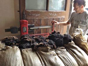 Jim Weighing a Sack of Wool