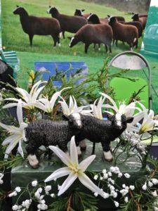 Zwartbles Lamb Decorations