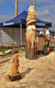 Chainsaw Carving Art