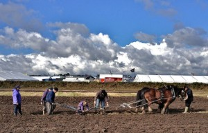 Ploughing is a Full Family Job 3 Generations Competing