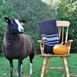 Pippy Longstockings Posing With a Zwartbles Travel Rug