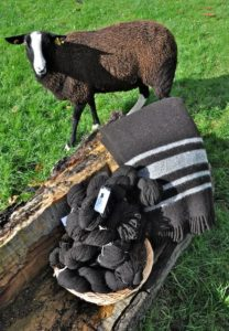 Pippy with the Travel Rug & 100% Zwartbles Yarn