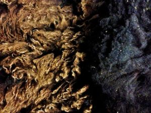 Topside & Bottom-side Zwartbles Fleece