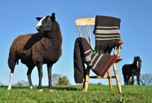 Irish Zwartbles Wool Blankets & Throws for Winter Warming Presents