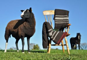 Irish Zwartbles Wool Blankets & Throws for Winter Warming Presents