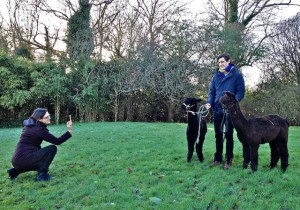 My Sister taking a Photo of Clement Alpaca Training