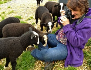 Sometimes you need a wide angle lens to get all the lambs in the photo as they crowd around you