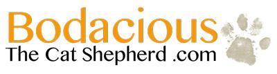 Bodacious-Logo-com