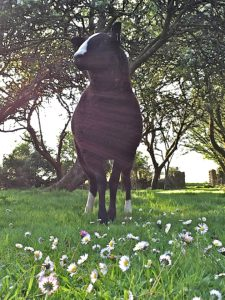 Ewe Lamb in the Orchard with Daisies
