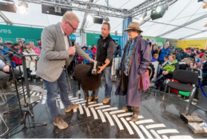 Myself and Jim Croke with his hogget Tullamain Cara talking to Damien O'Reilly from Country Wide live on RTE radio at the ploughing championships