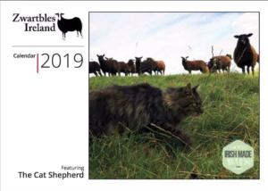 2019 Cat Shepherd Calendar